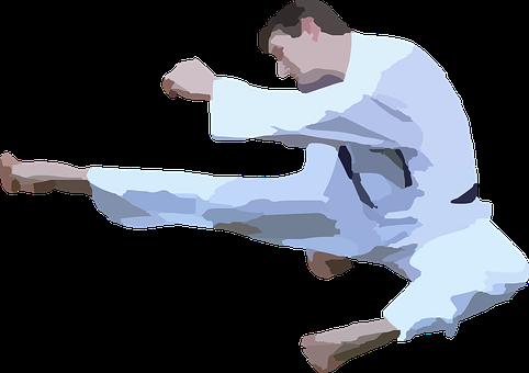 karate-42412__340