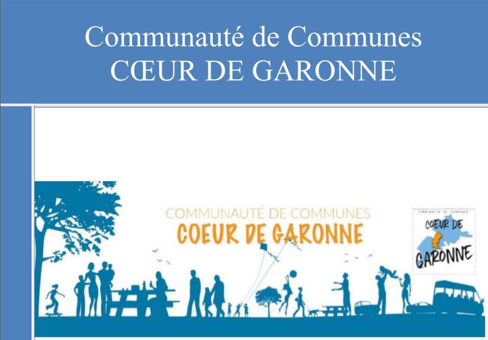 3cg-rapport-activite-2017